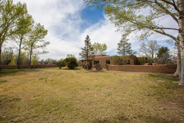 394 Price Lane, Corrales, NM 87048 (MLS #941627) :: Campbell & Campbell Real Estate Services