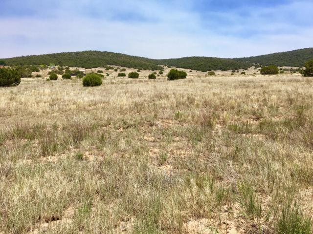 115 View North Trail, Edgewood, NM 87015 (MLS #941668) :: Campbell & Campbell Real Estate Services