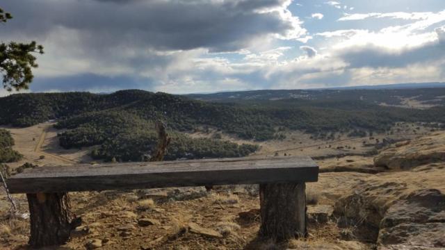 45 Elk Ridge Road, Pie Town, NM 87827 (MLS #941694) :: The Bigelow Team / Realty One of New Mexico