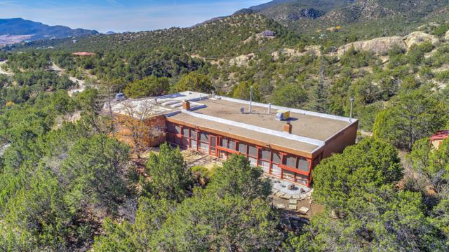 7 Rainier Court, Cedar Crest, NM 87008 (MLS #941735) :: Campbell & Campbell Real Estate Services