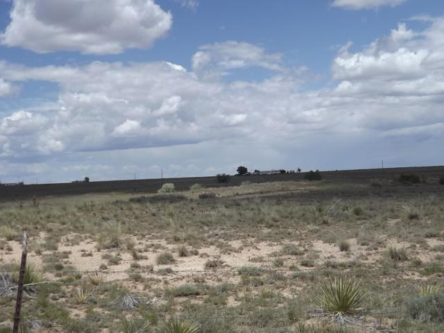 Martinez, Moriarty, NM 87035 (MLS #941736) :: Silesha & Company