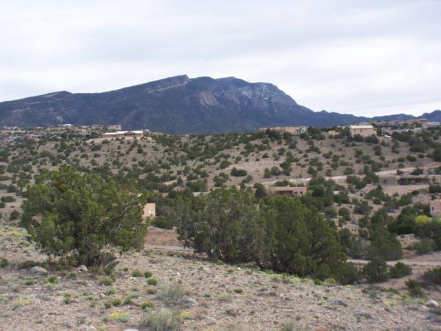 Sacred Path, Placitas, NM 87043 (MLS #941788) :: Campbell & Campbell Real Estate Services