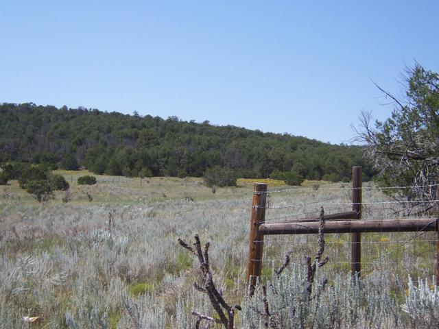 Lot 37 Calle Linda Luna, Edgewood, NM 87015 (MLS #941857) :: Campbell & Campbell Real Estate Services