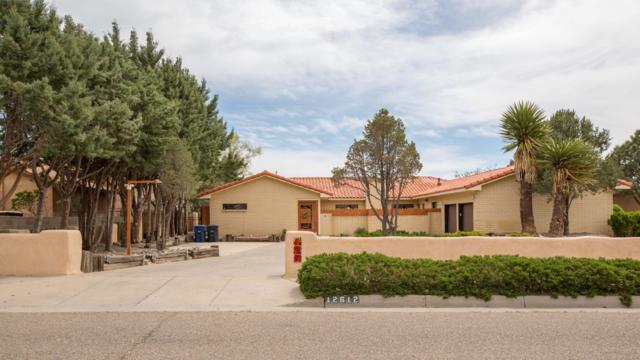 12612 Piru Boulevard SE, Albuquerque, NM 87123 (MLS #941904) :: Campbell & Campbell Real Estate Services