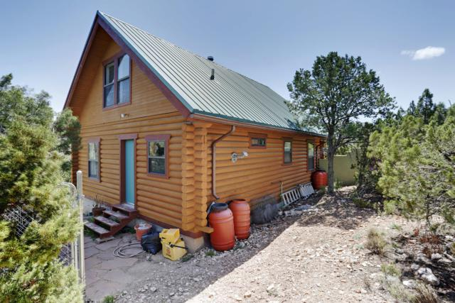 10 Osha Springs Road, Placitas, NM 87043 (MLS #941968) :: Campbell & Campbell Real Estate Services