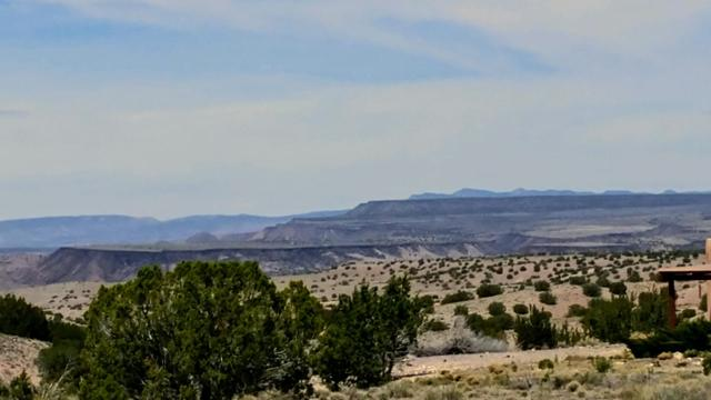 8 Calle Cacto, Placitas, NM 87043 (MLS #941984) :: Campbell & Campbell Real Estate Services
