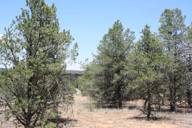 10 Candy Kitchen; Daniel Sub B4, Ramah, NM 87321 (MLS #942015) :: The Bigelow Team / Red Fox Realty
