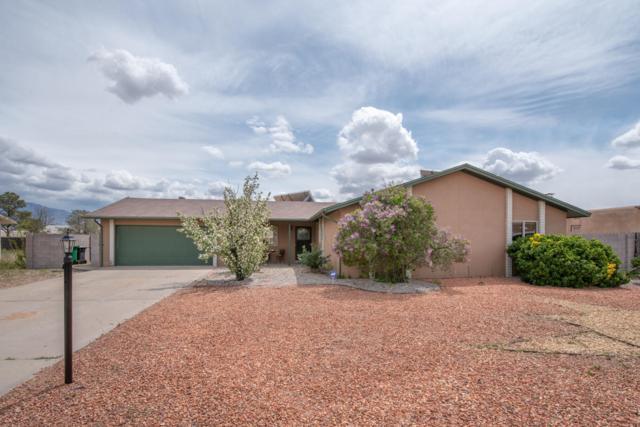 210 Rincon De Romos Drive SE, Rio Rancho, NM 87124 (MLS #942032) :: Campbell & Campbell Real Estate Services