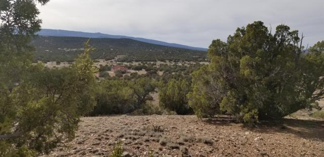Lot 40 Anasazi Trail, Sandia Park, NM 87047 (MLS #942094) :: The Bigelow Team / Red Fox Realty