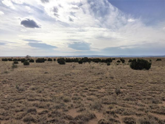 13 Brittany Lane, Edgewood, NM 87015 (MLS #942116) :: Campbell & Campbell Real Estate Services