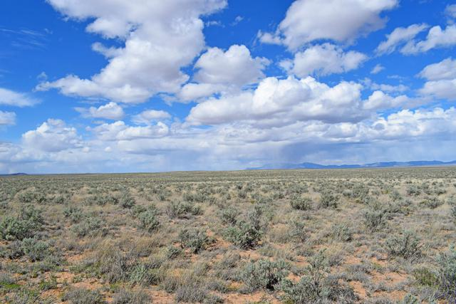 Lot 93 Rancho Rio Grande, Rio Communities, NM 87002 (MLS #942123) :: The Bigelow Team / Realty One of New Mexico