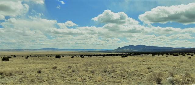 Southern Trail, Datil, NM 87821 (MLS #942255) :: Campbell & Campbell Real Estate Services