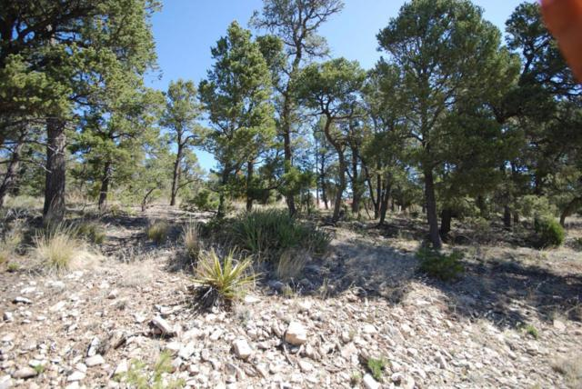45 Edelweiss, Tijeras, NM 87059 (MLS #942335) :: Campbell & Campbell Real Estate Services