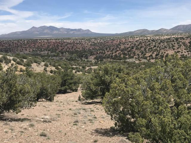 26 Canada Vista Drive, Sandia Park, NM 87047 (MLS #942395) :: Campbell & Campbell Real Estate Services