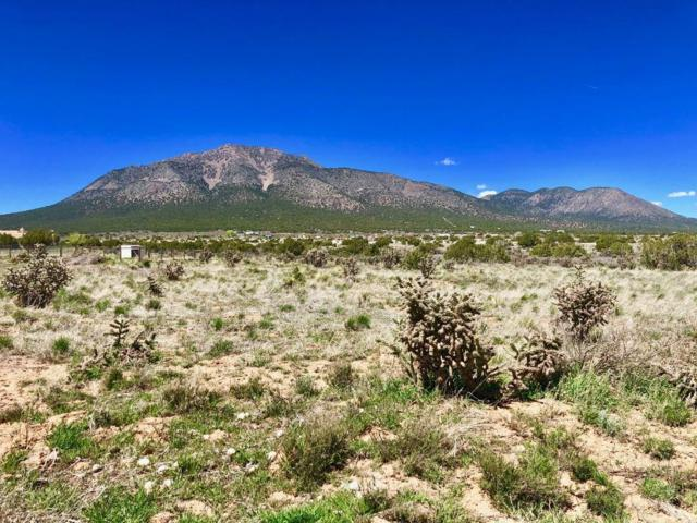 4 Janet Court, Edgewood, NM 87015 (MLS #942460) :: Campbell & Campbell Real Estate Services
