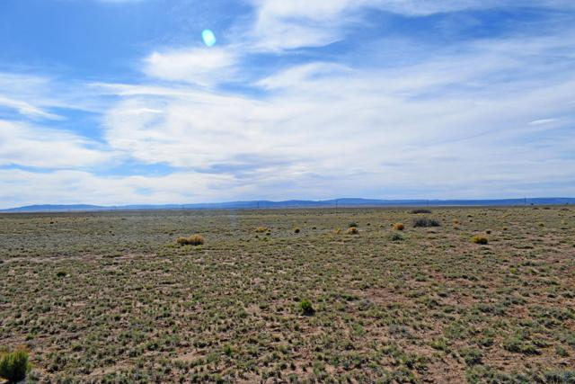 Lot 29 Rancho Rio Grande West #10, Belen, NM 87002 (MLS #942474) :: The Buchman Group
