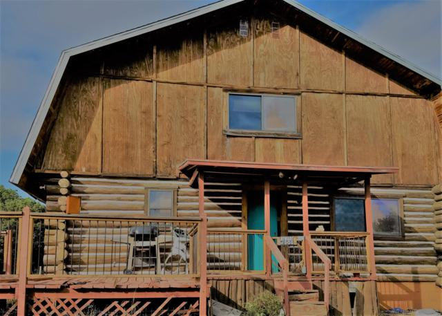 22 Diamond A Drive, Silver City, NM 88061 (MLS #942479) :: The Bigelow Team / Red Fox Realty