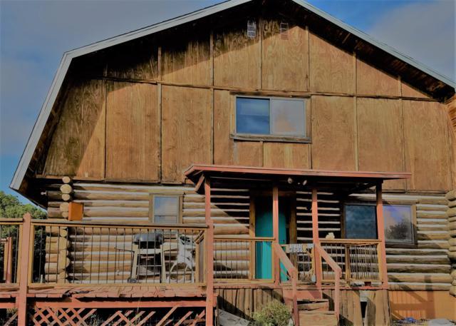 22 Diamond A Drive, Silver City, NM 88061 (MLS #942479) :: Silesha & Company