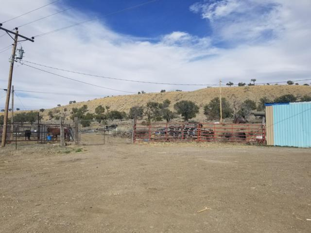 1190 Nm-371, Thoreau, NM 87323 (MLS #942498) :: Campbell & Campbell Real Estate Services
