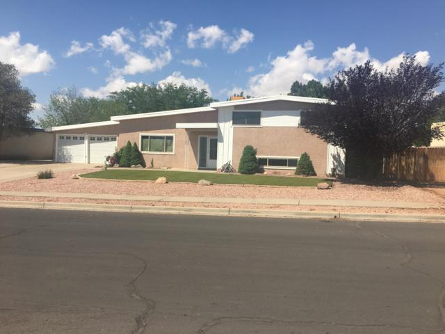 10107 Elmhurst Drive NW, Albuquerque, NM 87114 (MLS #942532) :: The Bigelow Team / Realty One of New Mexico