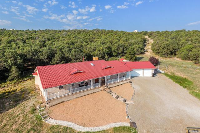 10 Camino Del Sur, Edgewood, NM 87015 (MLS #942544) :: Campbell & Campbell Real Estate Services