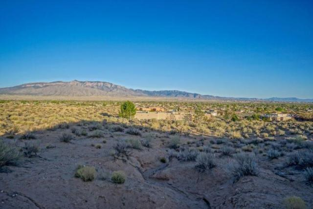 963 Camino Sin Pasada Road, Corrales, NM 87048 (MLS #942566) :: Campbell & Campbell Real Estate Services