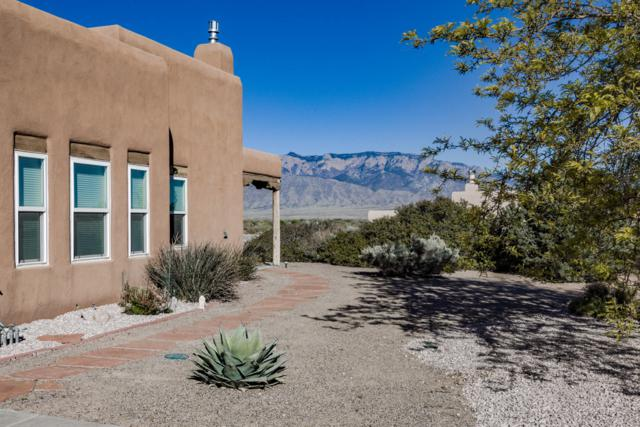 800 Penny Lane, Corrales, NM 87048 (MLS #942582) :: Campbell & Campbell Real Estate Services