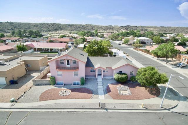 6829 Tamarisk Place NW, Albuquerque, NM 87120 (MLS #942588) :: Campbell & Campbell Real Estate Services