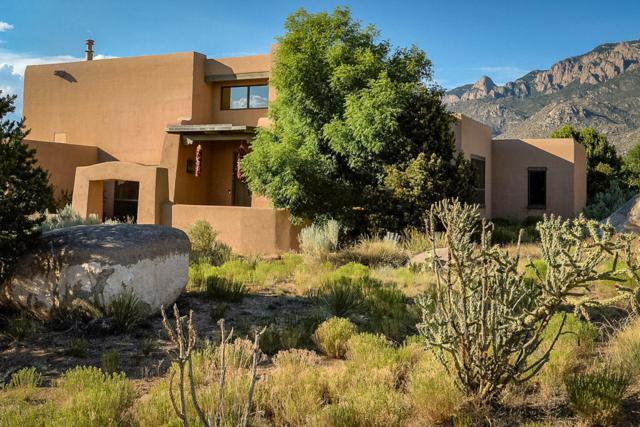 1147 Marigold Drive, Albuquerque, NM 87122 (MLS #942630) :: Campbell & Campbell Real Estate Services