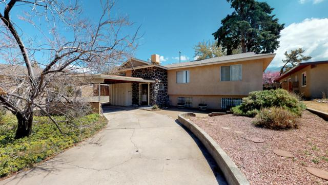 10516 San Marino Place NE, Albuquerque, NM 87111 (MLS #942644) :: The Bigelow Team / Realty One of New Mexico