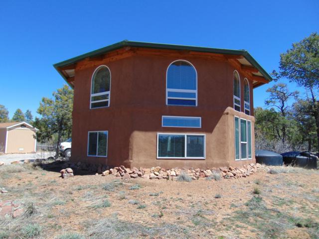 58 Elk Springs Road, Ramah, NM 87321 (MLS #942659) :: Silesha & Company