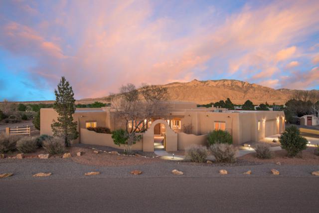 1 El Dorado Court, Corrales, NM 87048 (MLS #942690) :: Campbell & Campbell Real Estate Services