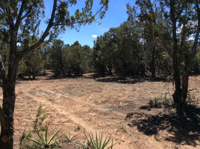 36 Jesse James Road, Edgewood, NM 87015 (MLS #942715) :: Campbell & Campbell Real Estate Services