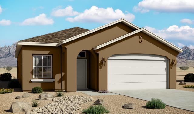 6387 Red Falcon Drive NE, Rio Rancho, NM 87144 (MLS #942777) :: Silesha & Company