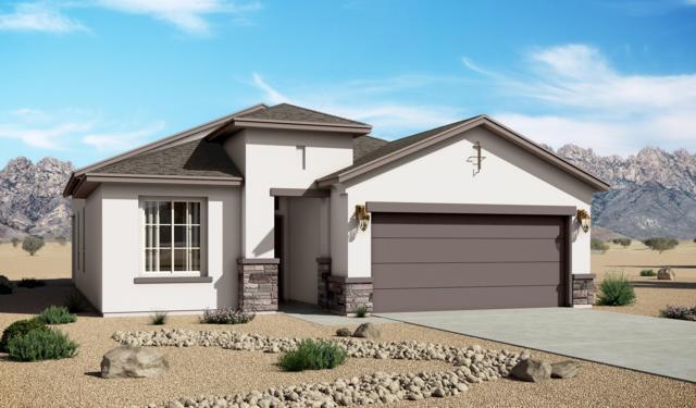 6404 Red Falcon Drive NE, Rio Rancho, NM 87144 (MLS #942781) :: Silesha & Company