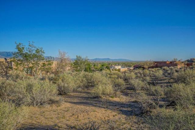 953 Camino Sin Pasada Road, Corrales, NM 87048 (MLS #942809) :: Campbell & Campbell Real Estate Services