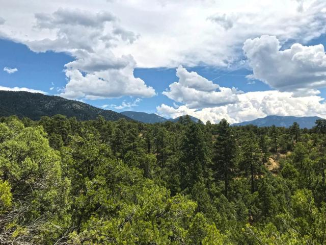 1 Gauging Trail Road Road, Arroyo Hondo, NM 87513 (MLS #942855) :: Campbell & Campbell Real Estate Services
