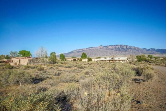 Lot 74 Sagebrush Drive, Corrales, NM 87048 (MLS #942934) :: Campbell & Campbell Real Estate Services