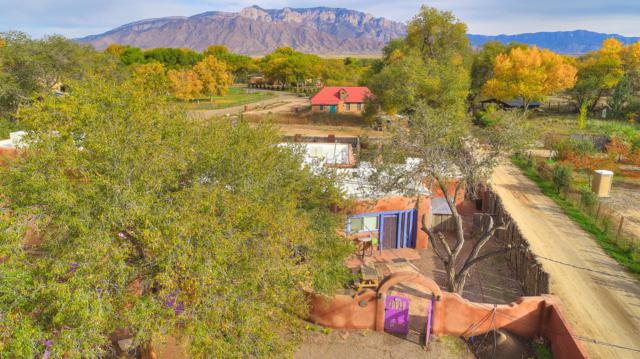 250 Moongate Road, Corrales, NM 87048 (MLS #942989) :: Campbell & Campbell Real Estate Services