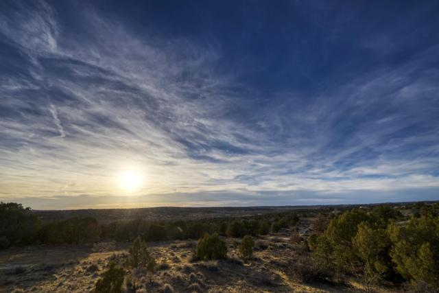 0 Lonesome Dove Drive, Aztec, NM 87410 (MLS #943065) :: Campbell & Campbell Real Estate Services