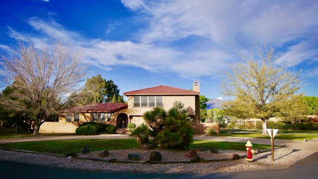 6500 Caballero Parkway NW, Los Ranchos, NM 87107 (MLS #943129) :: The Bigelow Team / Realty One of New Mexico