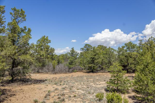 11 Jesse James Road, Edgewood, NM 87015 (MLS #943245) :: Campbell & Campbell Real Estate Services