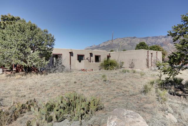 1455 Bluebell Drive NE, Albuquerque, NM 87122 (MLS #943249) :: The Bigelow Team / Realty One of New Mexico
