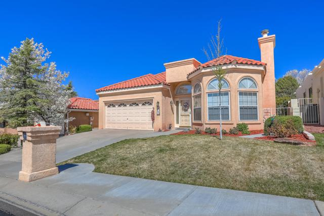 10015 Bridgepointe Court NE, Albuquerque, NM 87111 (MLS #943263) :: The Bigelow Team / Realty One of New Mexico