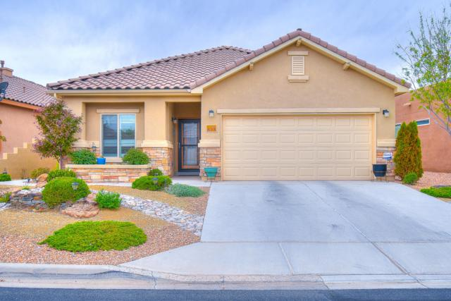 853 Purple Aster Drive, Bernalillo, NM 87004 (MLS #943409) :: Campbell & Campbell Real Estate Services