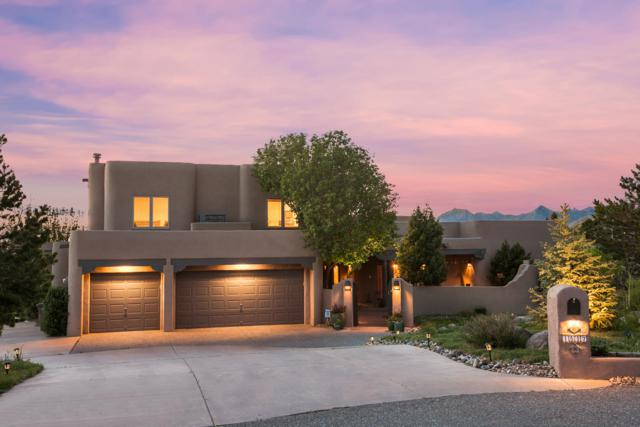1517 Eagle Ridge Terrace Road NE, Albuquerque, NM 87122 (MLS #943466) :: Silesha & Company