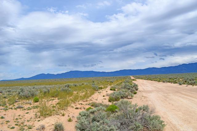 Lot 8 Rio Del Oro, Los Lunas, NM 87031 (MLS #943530) :: The Bigelow Team / Realty One of New Mexico