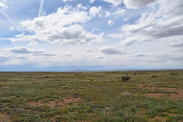 Lot 17 Rio Del Oro, Los Lunas, NM 87031 (MLS #943540) :: The Bigelow Team / Realty One of New Mexico
