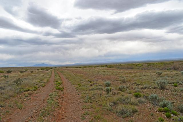 Lot 1 Rio Del Oro, Los Lunas, NM 87031 (MLS #943561) :: The Bigelow Team / Red Fox Realty