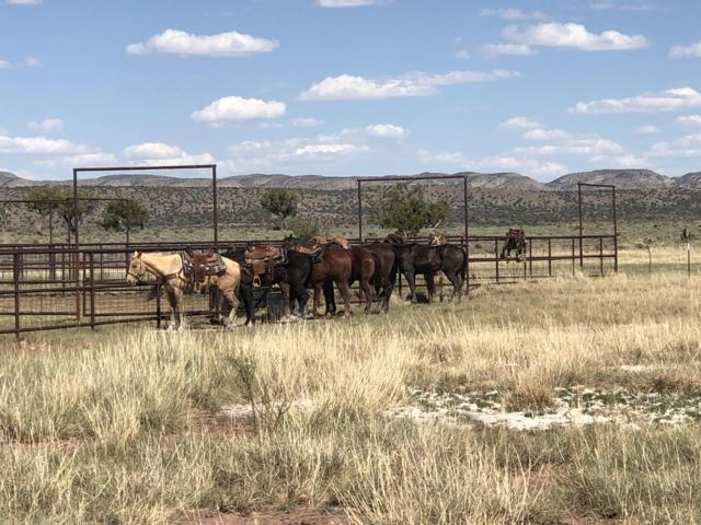 Triangle Sky Ranch, Magdalena, NM 87825 (MLS #943655) :: The Bigelow Team / Red Fox Realty